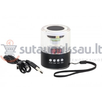 Garsiakalbis USB MP3 / MP4 radio