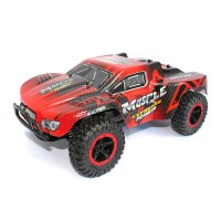 "RC Monster Truck ""Cheetah king"""